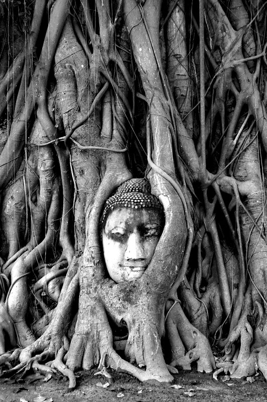 Wat Maha That Ayutthaya