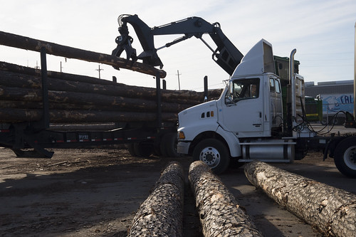 Logs from the U.S. being shipped overseas are unloaded near the Port of New Orleans in New Orleans, LA on Wednesday, Nov. 20, 2013. USDA photo by Anson Eaglin.