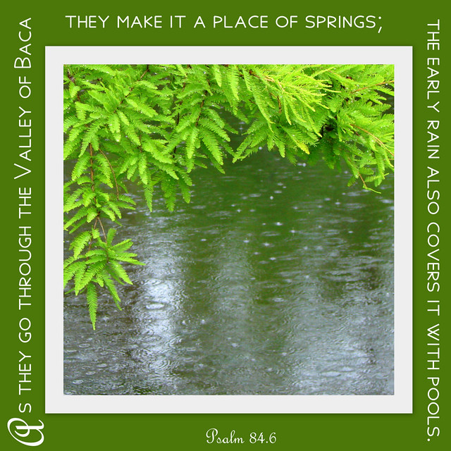 Pollywog Creek: Still Saturday::a valley of weeping {Psalm 84.6 ...