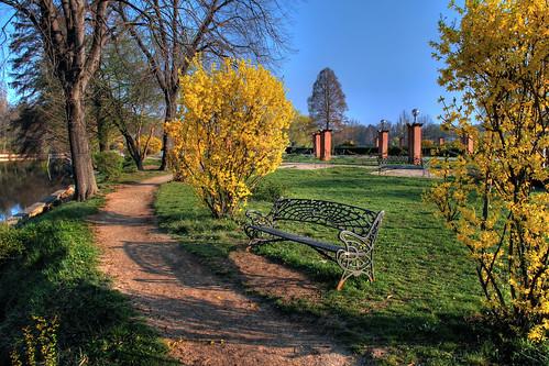 europa romania parc hdr bucuresti herastrau alee primavara dimineata muntenia insulatrandafirilor