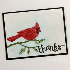 a2z Scrapbooking - Hero Arts One Layer Thank You Card