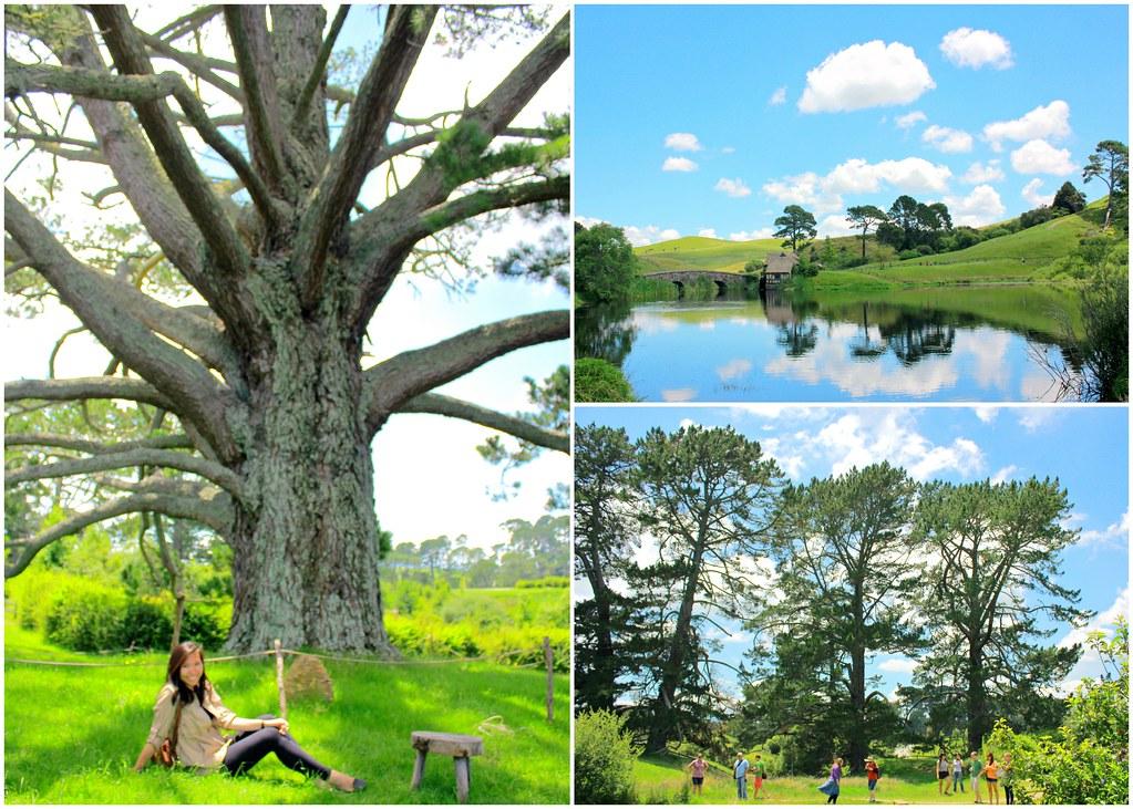 hobbiton-party-tree