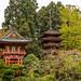 GoldenGateParkJapaneseTeeGardens20September 09, 2016.jpg