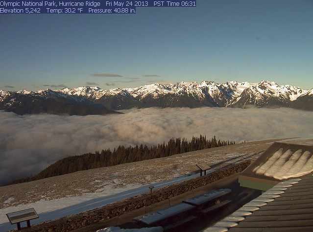 Beautiful morning on Hurricane Ridge
