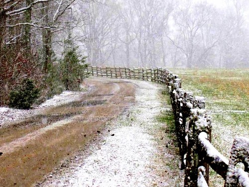 road wood trees winter snow nature rural fence landscape virginia spring woods scenery long transformation farm country dirt lane change snowfall splitrail charlottecourthouse charlottecounty platinumheartaward