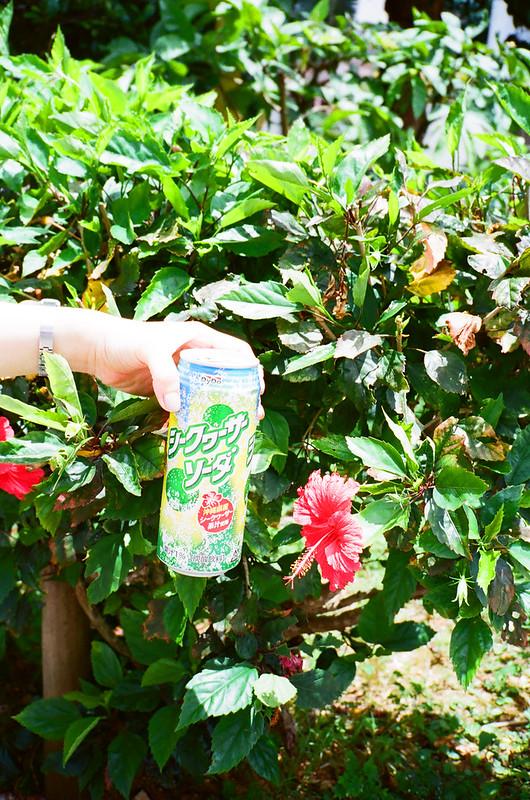 Okinawa_Film_51210033