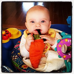 Nom nom. Carrot feet taste awesome!