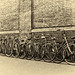 Row of Bicycles by Heart & Soul