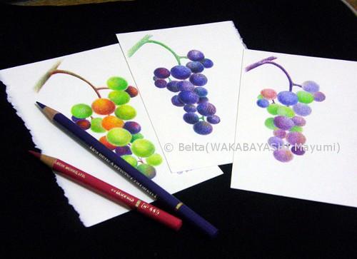 2013_09_09_grape_03_s