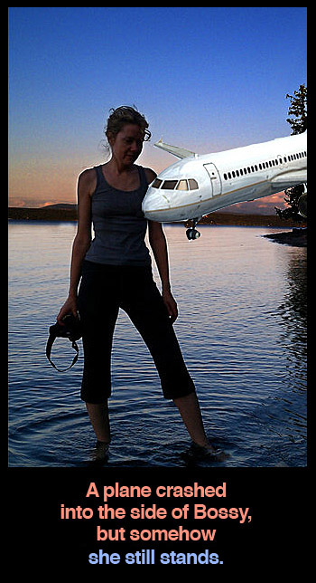 iambossy-plane-911