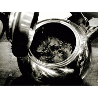 A pot of chrysanthemum tea in b&w.