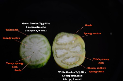 Garden Egg Crosssections and description