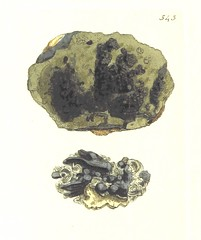 """British Library digitised image from page 574 of """"British Mineralogy: or coloured figures intended to elucidate the mineralogy of Great Britain. By J. Sowerby (with assistance) . F.P"""""""