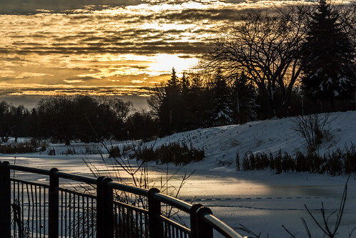 sunset st fence river albert sturgeon