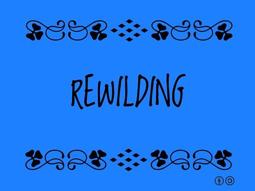 Buzzword Bingo: Rewilding