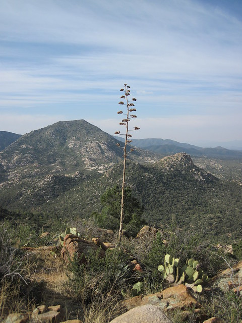 Picture from Granite Mountain, Arizona