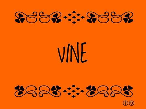 Buzzword Bingo:Vine
