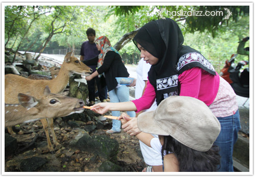 11712237346 509120f290 o BERCUTI DI HATYAI THAILAND PART 6   songkhla Zoo