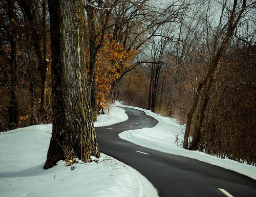 park trees winter snow nature minnesota landscape scenery path trail winona walkingtrail