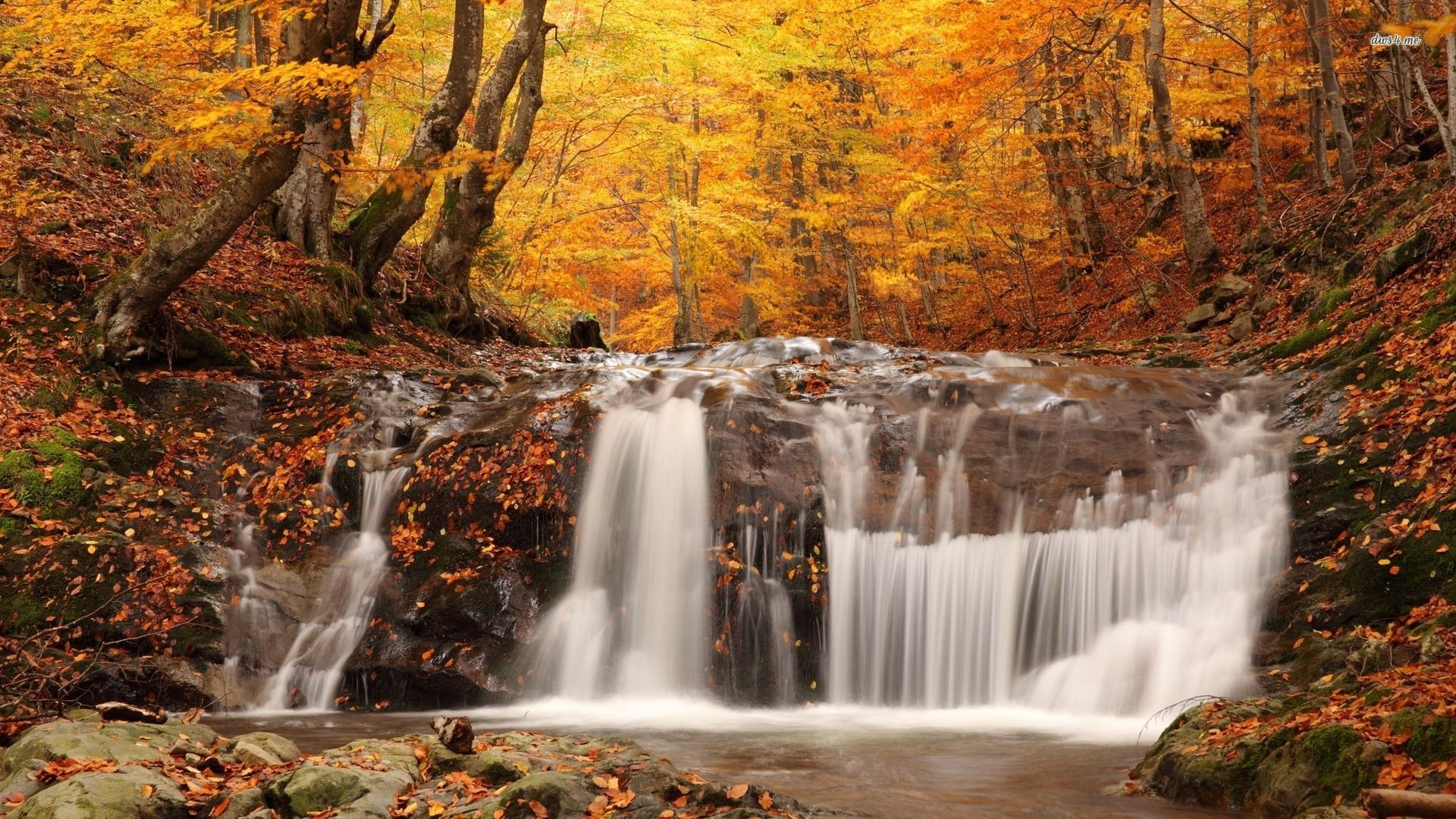 Fall Desktop Backgrounds Hd