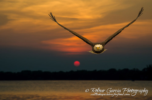 sunset baldeagle crystallake mainbeach