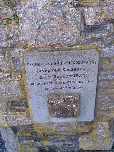 At Aghaboe Abbey nr.Roscrea Tipperary.