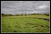 Towthorpe deserted Medieval Village