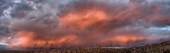 Placitas, New Mexico Sunset