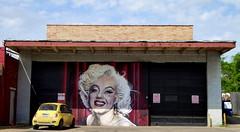 Marilyn, Oak Cliff, Dallas