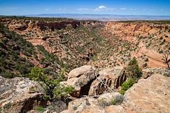 Jones Canyon Overlook (4-15-17)