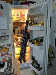 Evie Getting Food