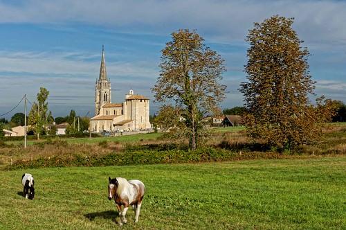Gironde: Tresses