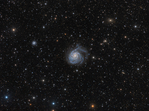 M101 Deep Wide Field