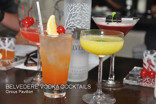 BELVEDERE VODKA COCKTAILS 7