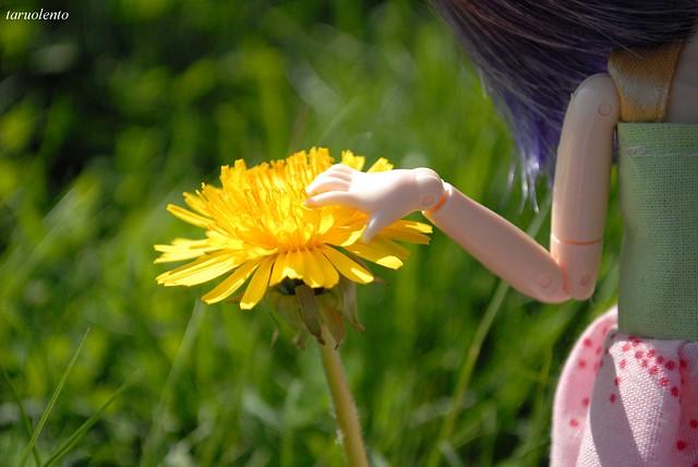 Flowerpower!!