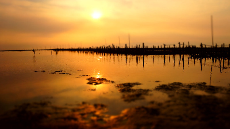 黃昏地平線