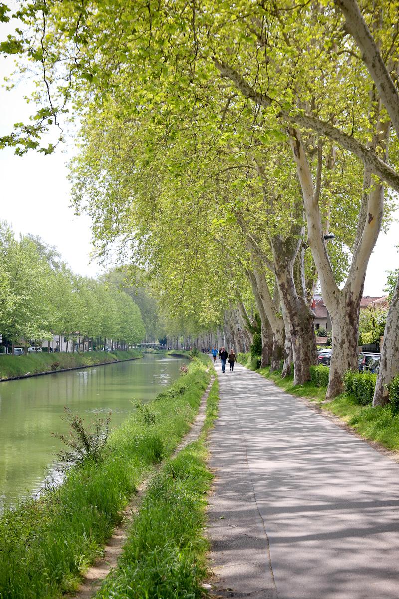 Serres municipales de Toulouse