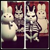 New kozik bone labbits now in stock