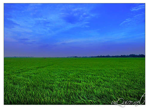 philippines bicol ricefields albay tiwi fujis9500 flickrandroidapp:filter=none