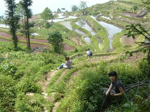 Yunnan13-Yuanyang 18 (9)