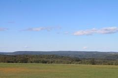 Stid Hill