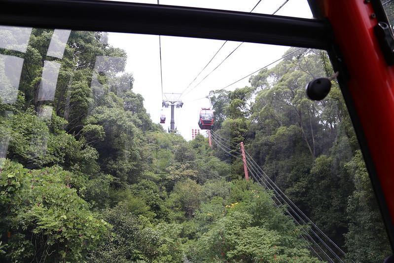 布引ハーブ園ロープウェー登り始め上方向の景色