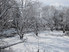 """Aftermath of January 26, 2011 """"Thundersnow"""""""