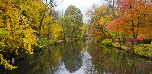 autumn trees color fall water colors leaves reflections river landscape colorful waterreflections cranford rahwayriver