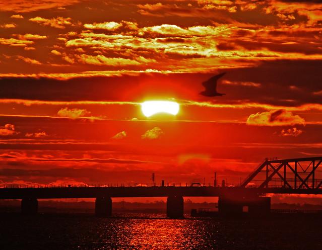 Solar Eclipse New York City JFK November 3 2013 IMG_2615