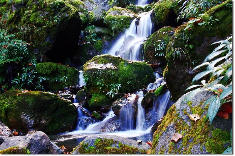 流瀑(Elev. 2285 m) 4