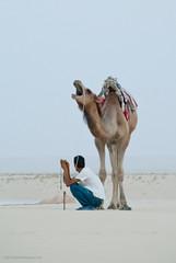Túnez - Desierto del Sahara