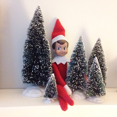 #snowballtheelf #elfontheshelf snowball is excited that we are going to get our tree today!