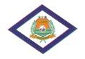 Bandeira da cidade de Maracanau
