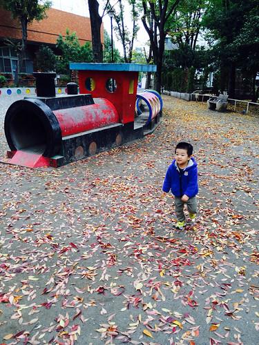 秋の公園 2013/11